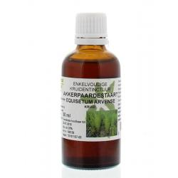 Equisetum arvense / akkerpaardestaart tinctuur