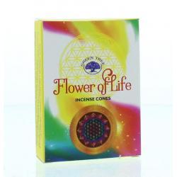 Kegelwierook flower of life