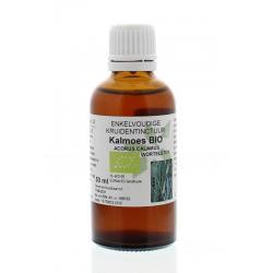 Acorus calamus / kalmoeswortel tinctuur bio