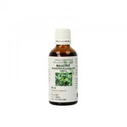 Berberis aquifolium / mahonie wortel tinctuur