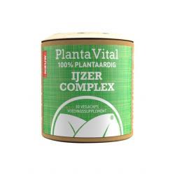 IJzer complex - 100% plantaardig