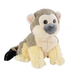 Mini doodshoofd aapje