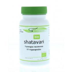 Shatavari bio