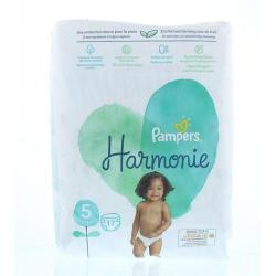 Harmonie maat 5