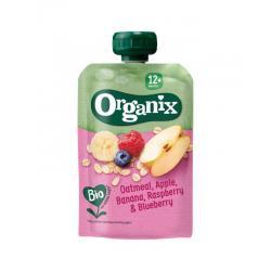 Oatmeal apple banana raspberry blueberry 12+ bio