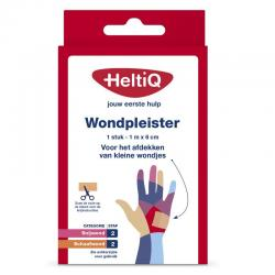 Wondpleister 1 m x 6 cm