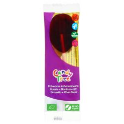 Cassis lollie
