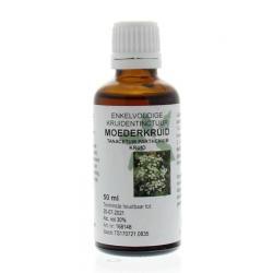 Tanacetum parthenium herb / moederkruid