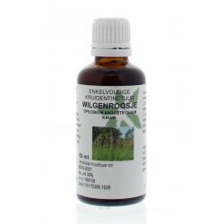 Epilobium angustfolium / wilgenroosje
