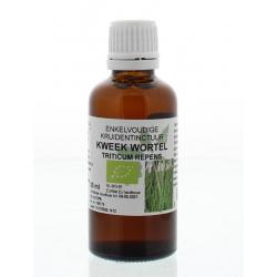 Triticum repens r / kweekwortel