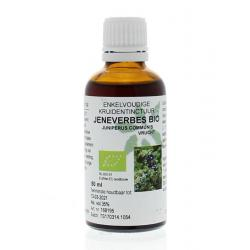 Junipersum communis fr / jeneverbes