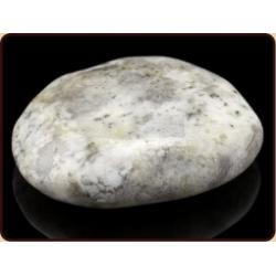 Hot en coldstone opaal dendriet