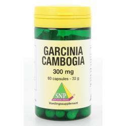 Garcinia cambogia 300 mg