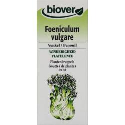 Foenicum vulgare tinctuur
