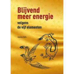 blijvend meer energie vo 5 ele