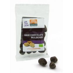 Mulberries snack raw puur chocolade